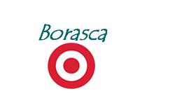 Borasca Blog